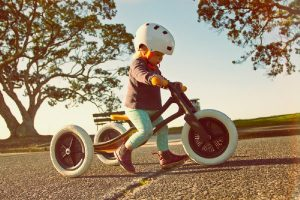 Toddlers Best Wooden Rides
