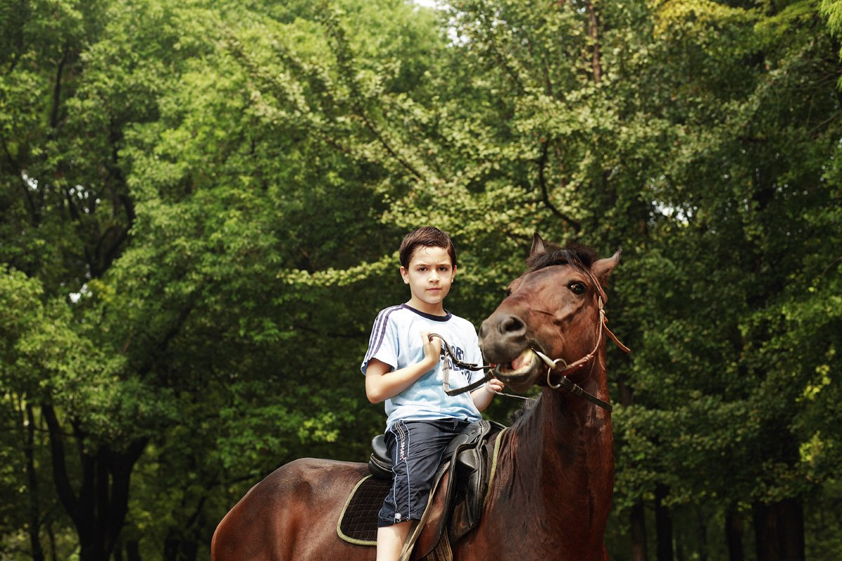 Cool Horse Facts for Kids s